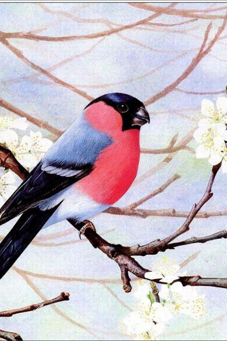 bird diy diamond painting rhinestone Embroidery Cross Stitch home bedroom decoration decorative painting