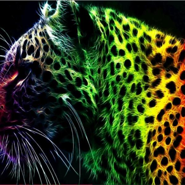 animal diy diamond painting Colorful Leopard cross stitch kit home decoration bedroom decor wall painting